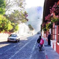 【瓜地馬拉】安提瓜 花神 貝拉卡摩娜 波旁