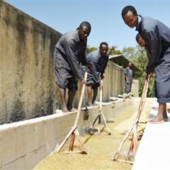【衣索比亞】西達摩 谷吉 所羅門水洗G1