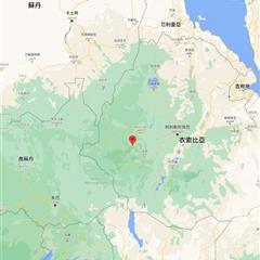 【衣索比亞】谷吉 迪奇朵村 日曬 慢乾 G1